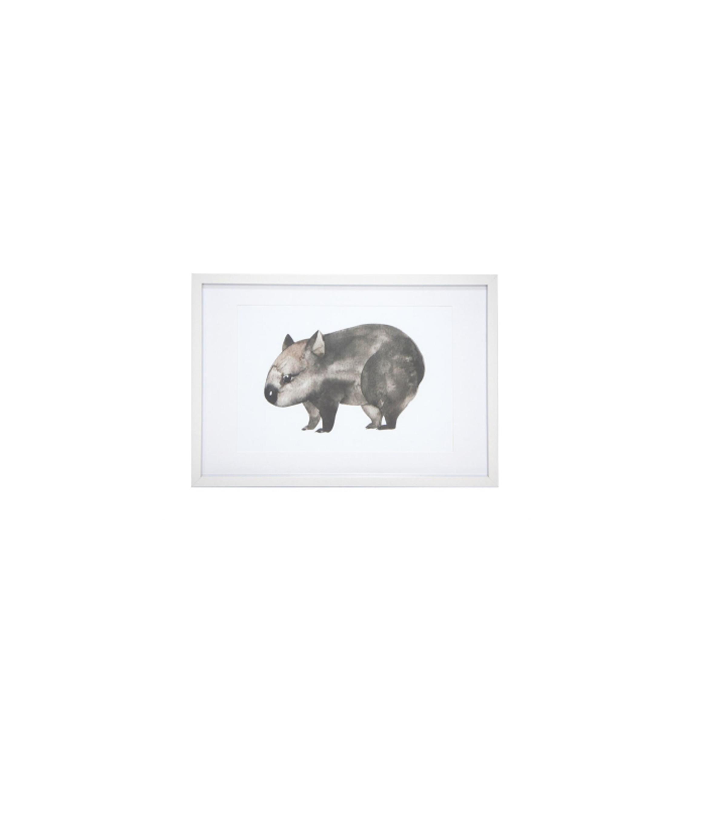 Wally Wombat