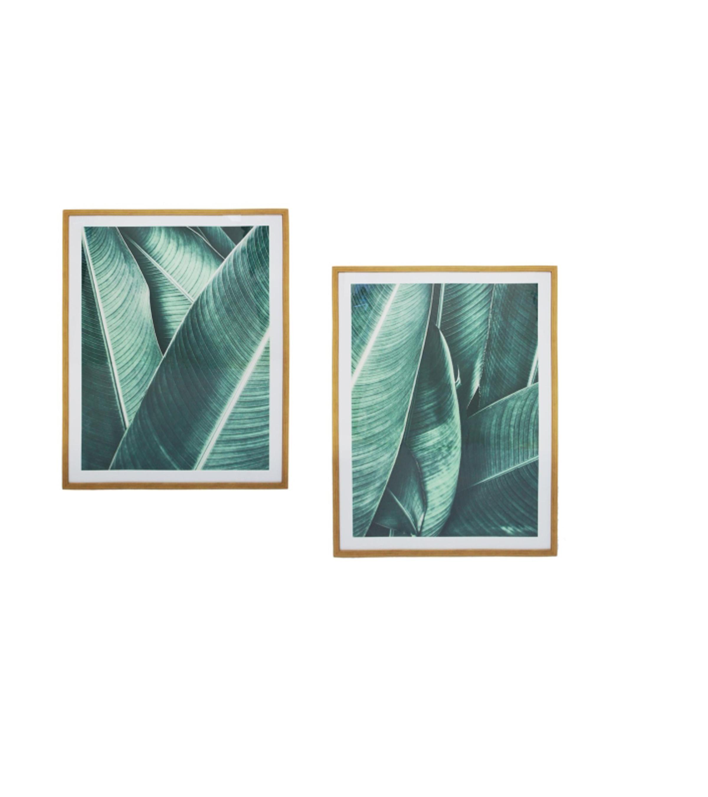 Banana Leaf - 2 asstd