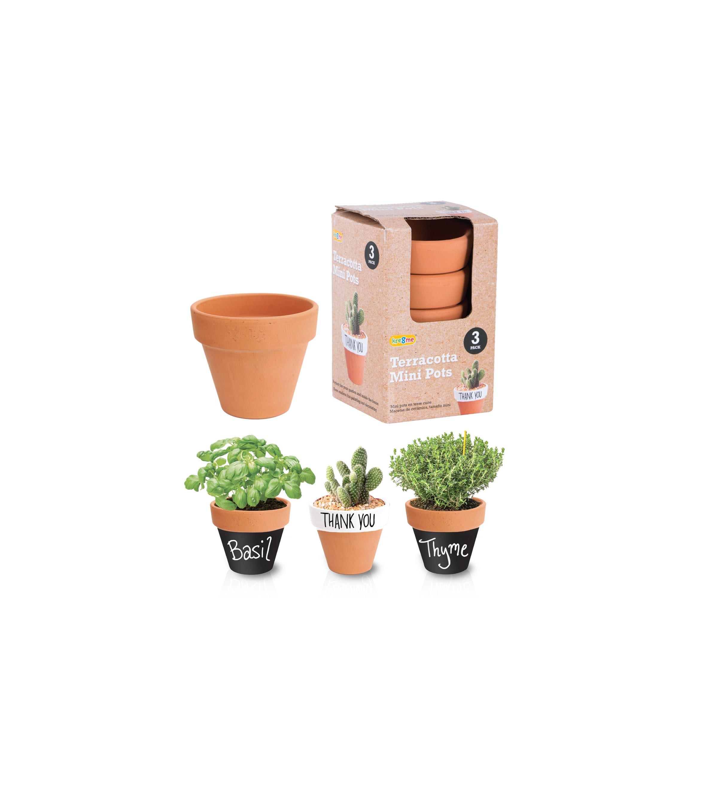 Terracotta pots mini 3pk